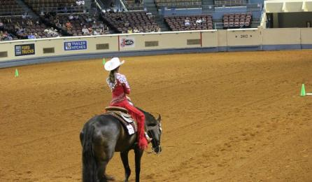 Horsemanship pattern for judging