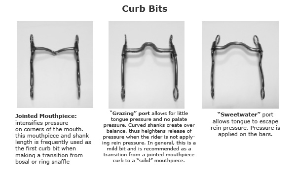 examples of curb bits