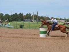 Barrel Racing, Horse Judging