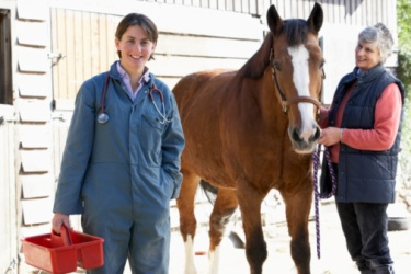 Veterinarian with horse owner