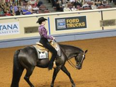 Horsemanship trot in motion