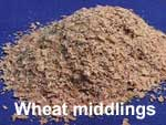 Wheat middlings