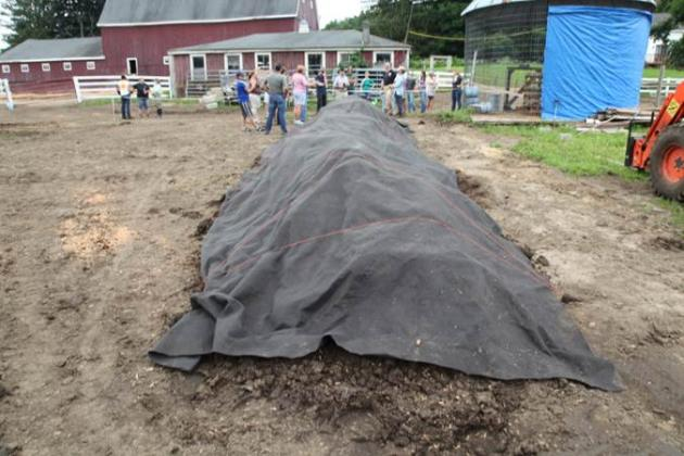 Composting pile with cover