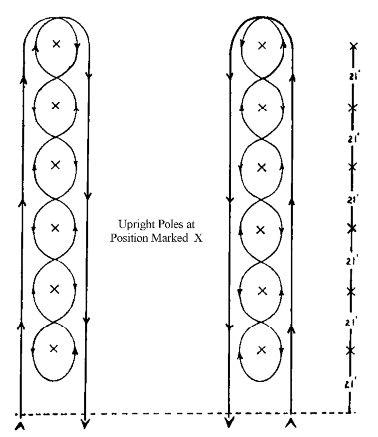AQHA Pole Bending Pattern